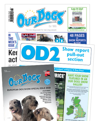 The Leading Weekly Canine Newspaper - covering the world of dogs, shows, breeding and exhibiting...